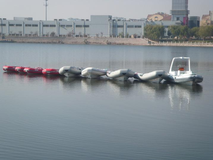 Specialized Rib Boat, Fibgerglass Fishing Boat, Rigid Inflatable Boat Maker