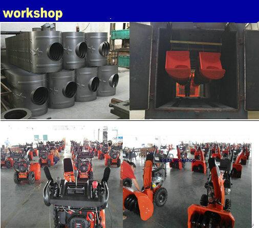gasoline snow blower workshop