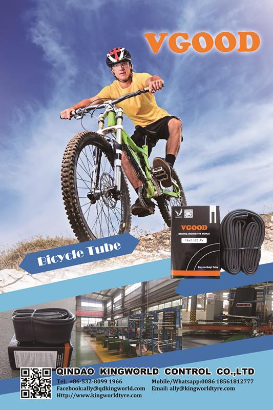 Bicycle Tube