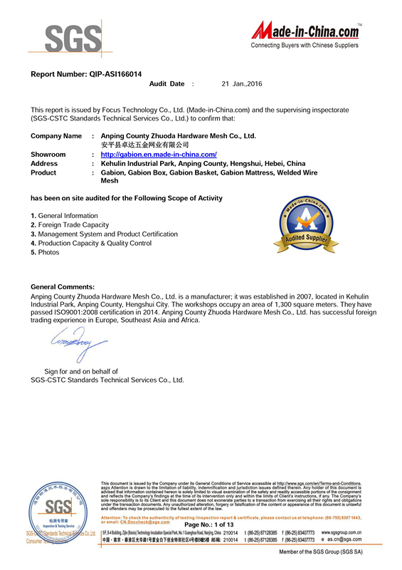 SGS ASSESSMENT REPORT