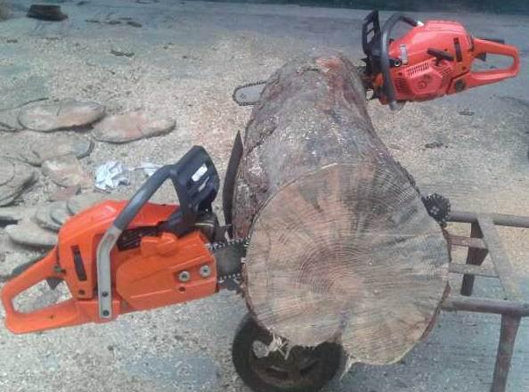 gasoline chainsaw