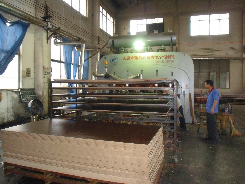 Dongjia Pressing Line 1