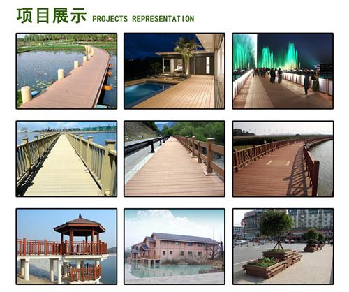 Project Representation