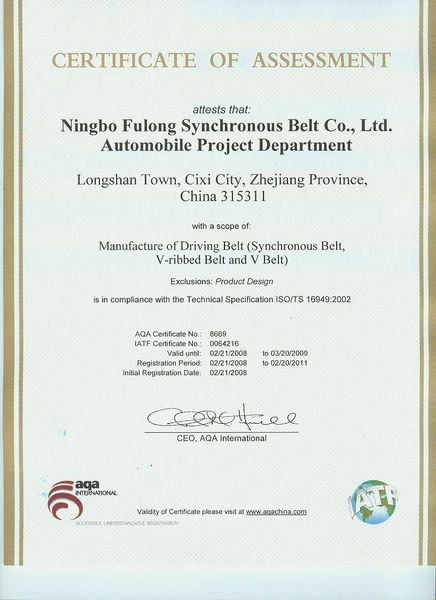 ISO/TS 16969: 2002