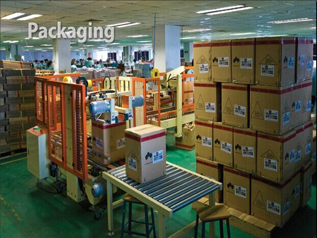 Packing Line in productio