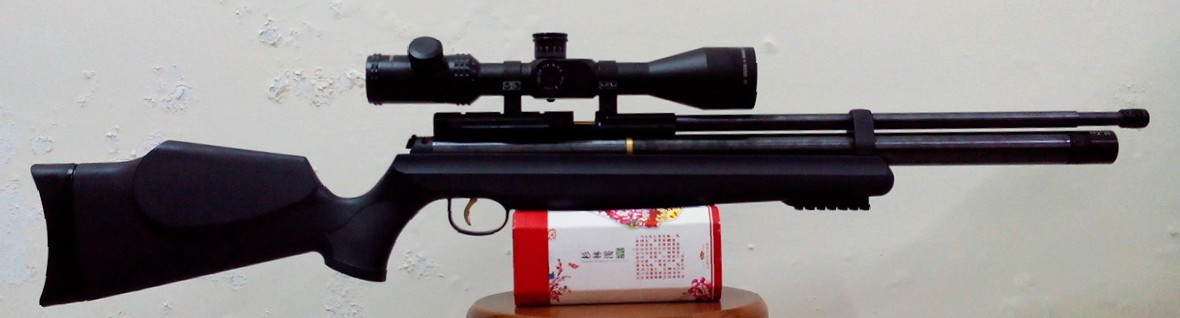 Demo for PCP with Sentinel 4-16x50E Scope