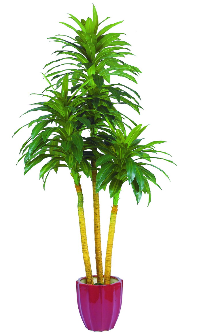 best selling artificial plants of Dracaena