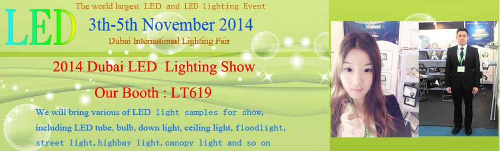 2014 Dubai Led Lighting Show(3th-5th Nov. 2014)