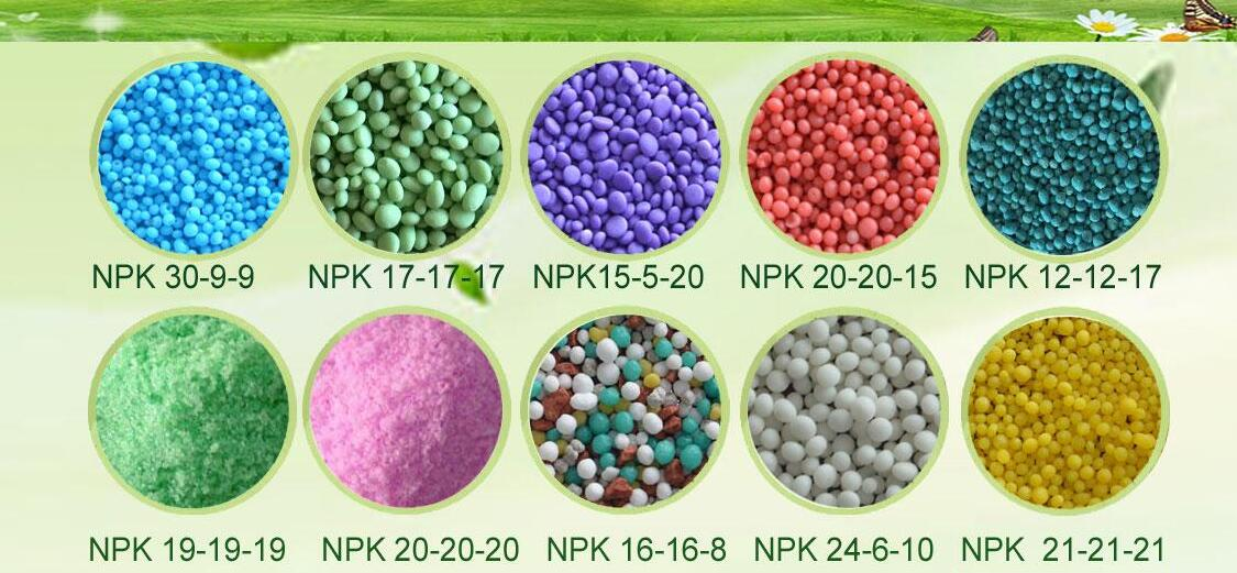 NPK Compound fertilizer factory quote you the best price