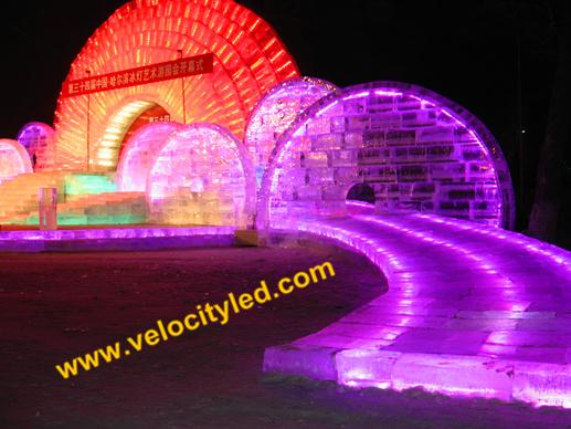 Harbin Disney Ice Lighting