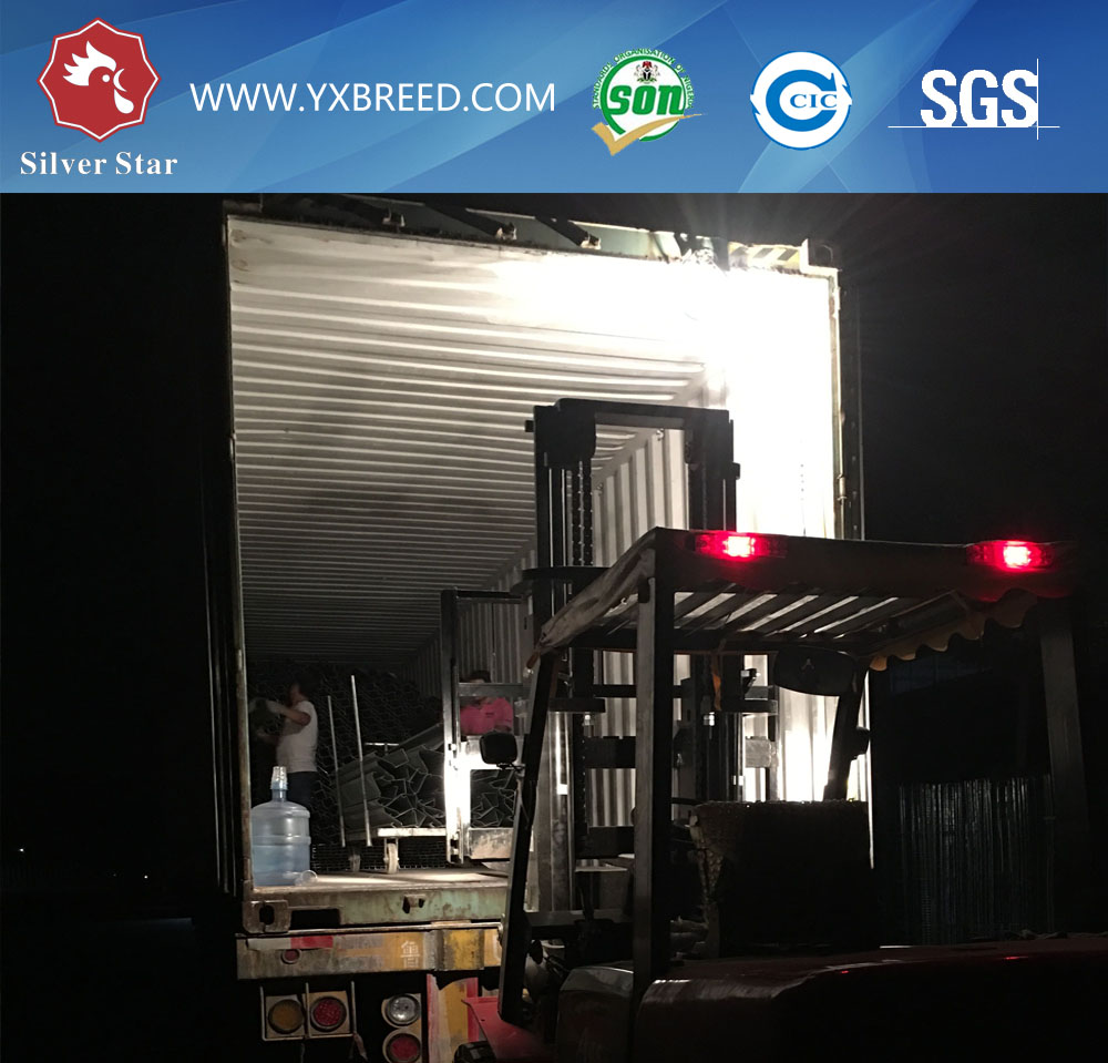 Loading container 5