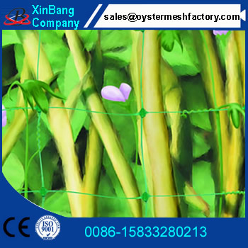 Hot sales plant support mesh