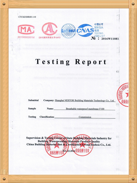 TESTING REPORT F-100
