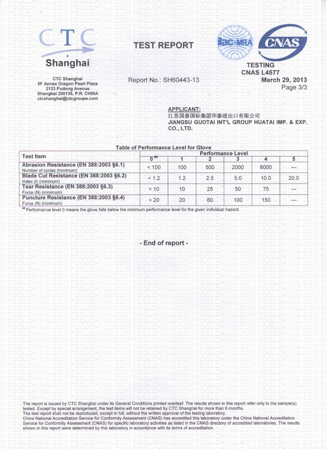 Test Report-6