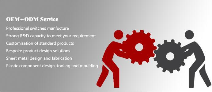 We are looking forward to handle OEM/ODM orders.