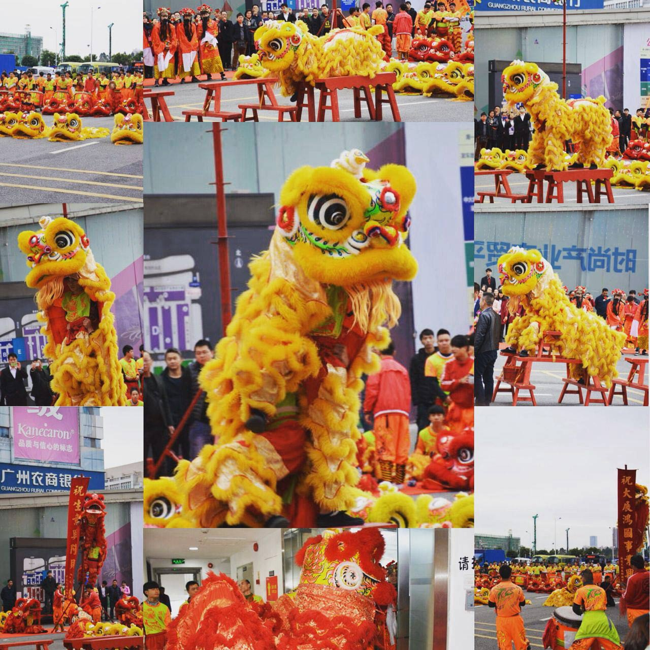 Lion Dance for the new year beginning work, and it means everything good for the coming year.