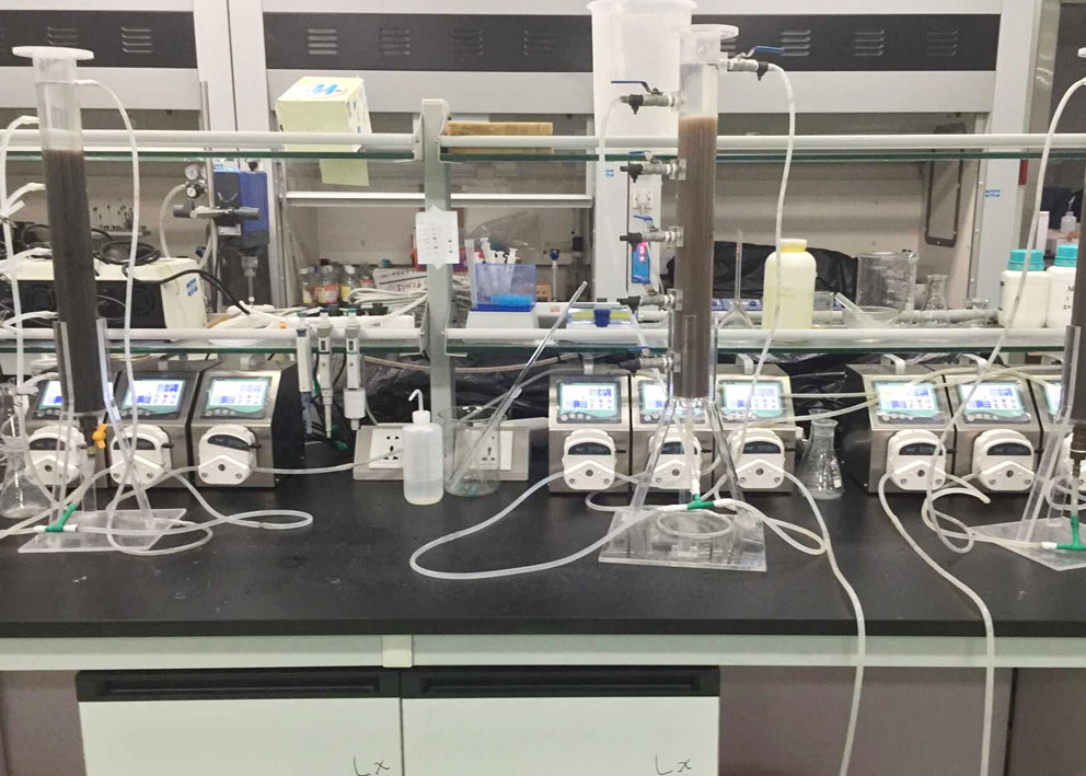 Chromatography Application