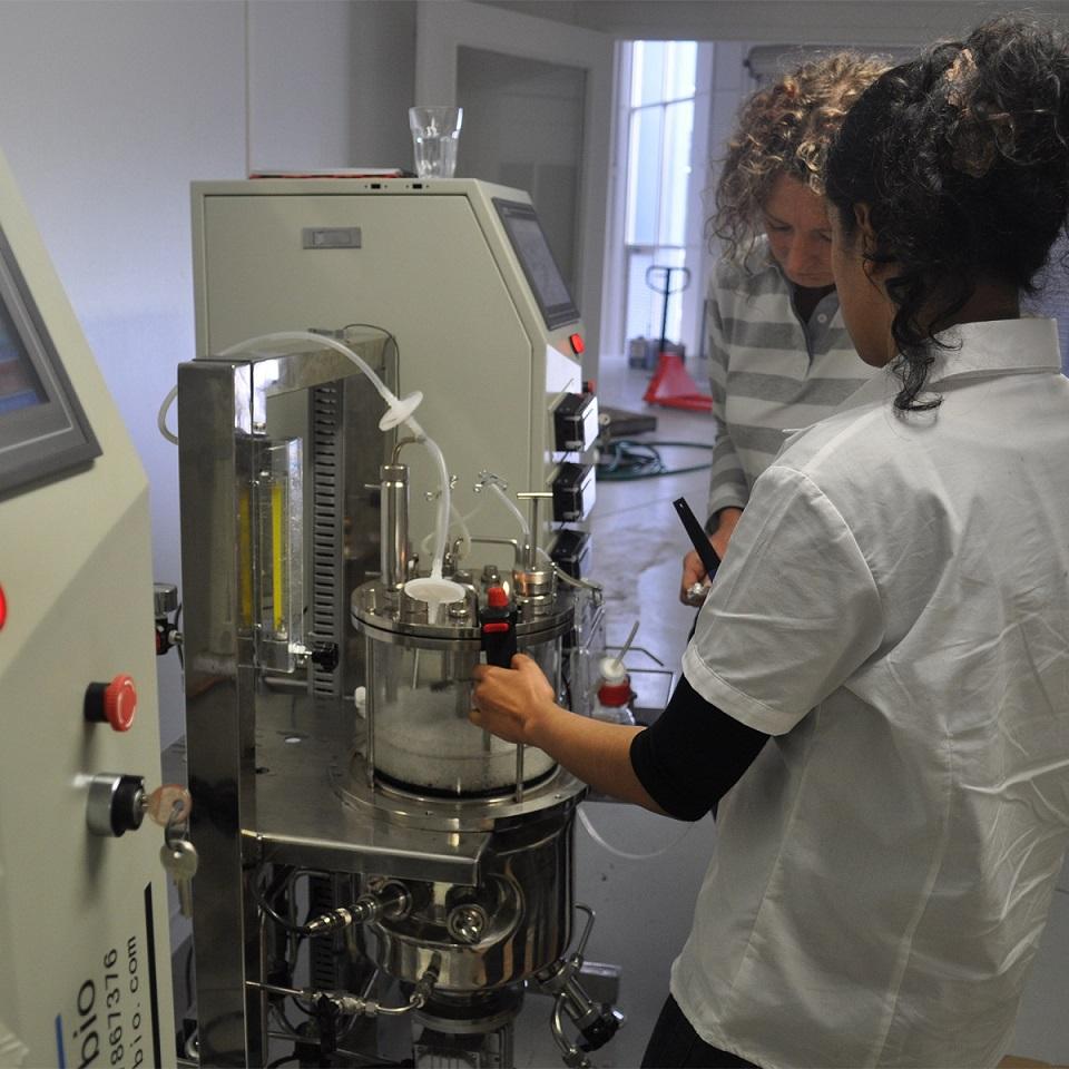 15Liters in Situ Sterilization Glass Fermenters (Magnetic Drive glass tank vertical)