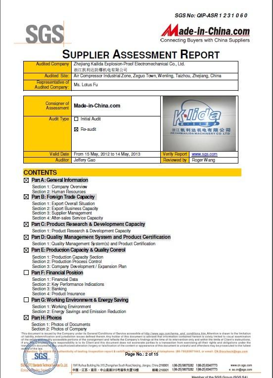 SGS REPORT1