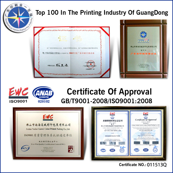 Top 100 in the printing industry of guangdong