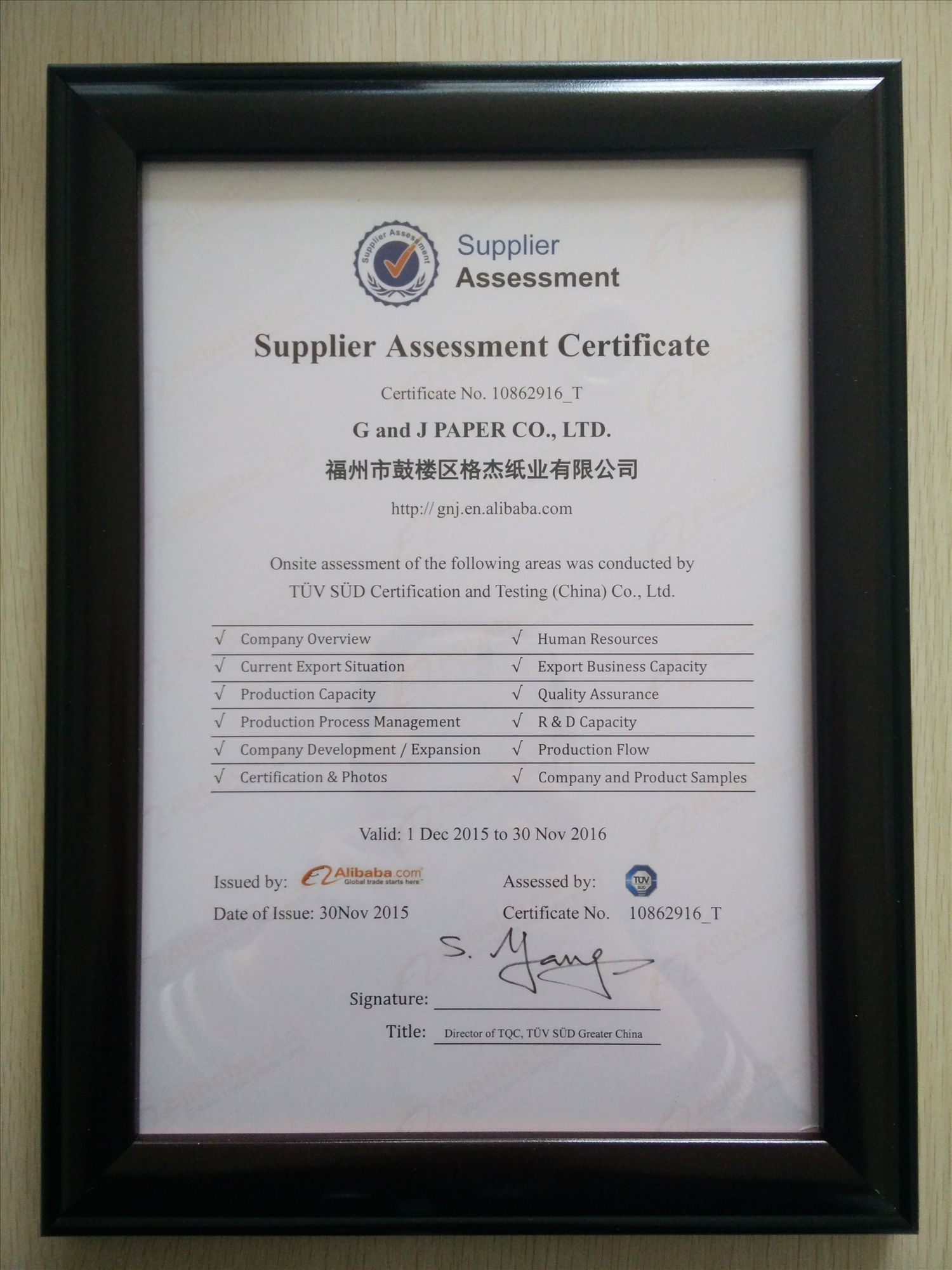 TUV SUD Assessment Certificate