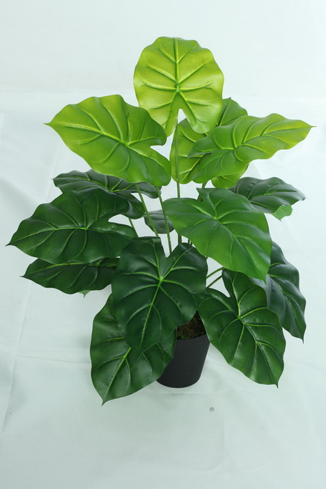 high quality and best selling artificial plants of Wild Taro