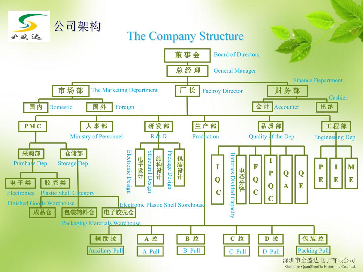 Company Structure Flow