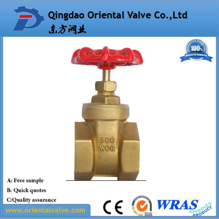 China manufacture brass gate valve for water meter european style brass gate valve