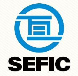 SEFIC- China Gas Cylinder Manufacturer & Gas Project Solution Supplier