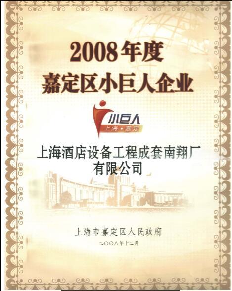 Excellent enterprises in Jiading District