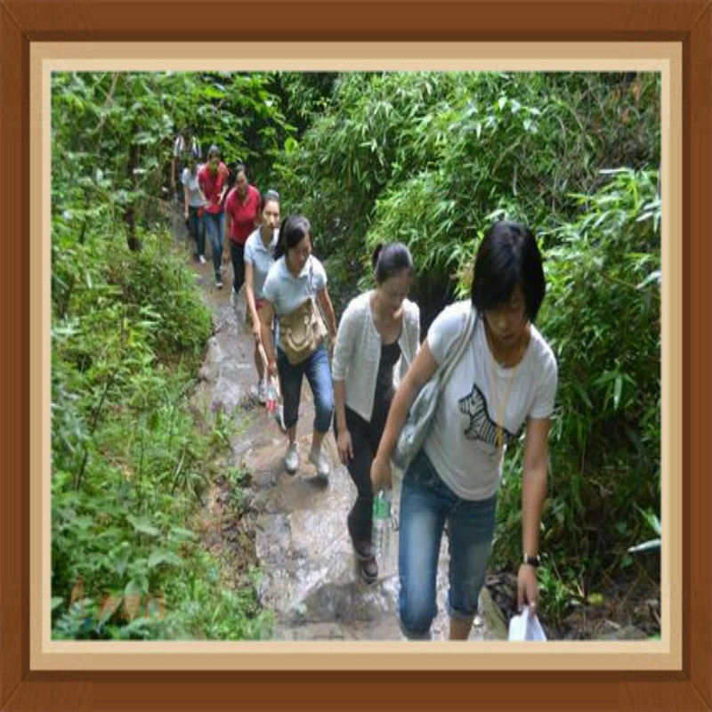 Galilee Workers Mountain-Climbing Activity B