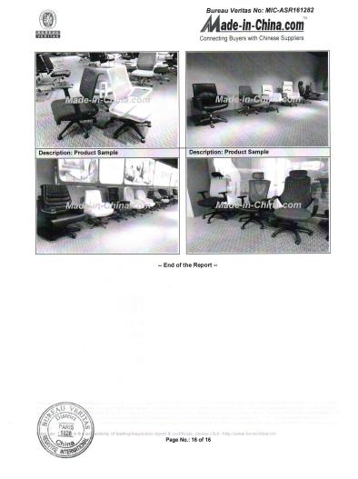 BV Report -16