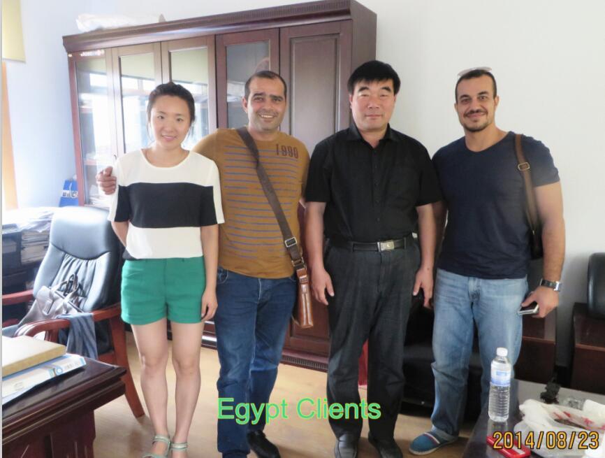 Egypt buyer for waste tire shredder machine