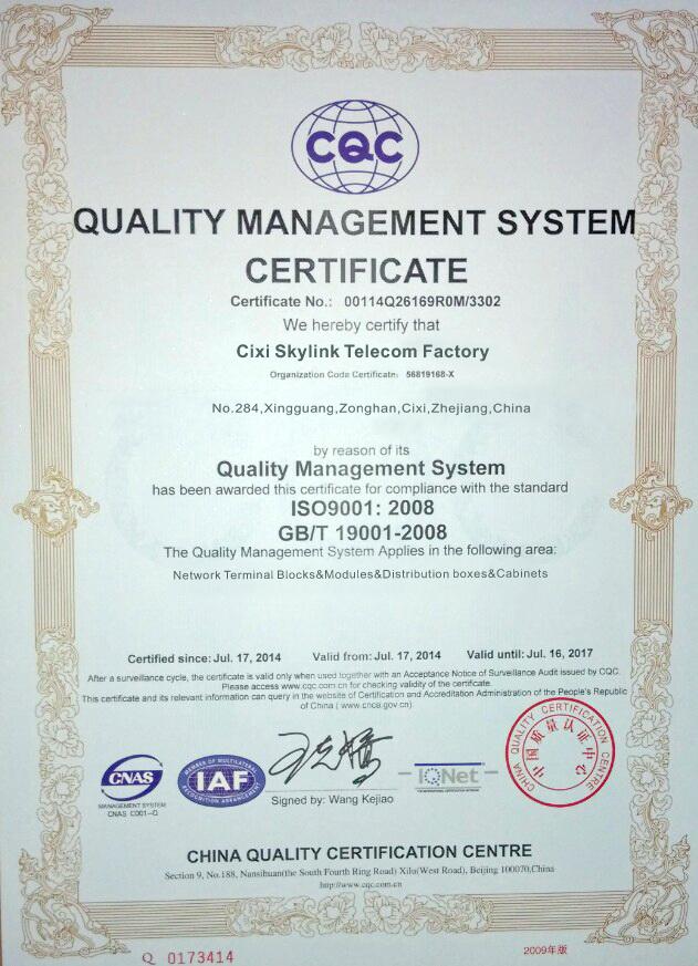Skylink ISO Certificate