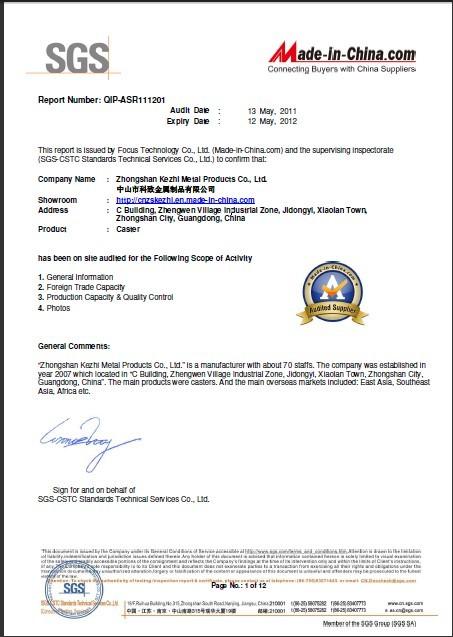 2012 SGS Audit Report
