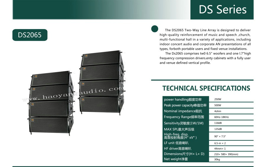 Ds Series Indoors Mini Line Array --DS2065