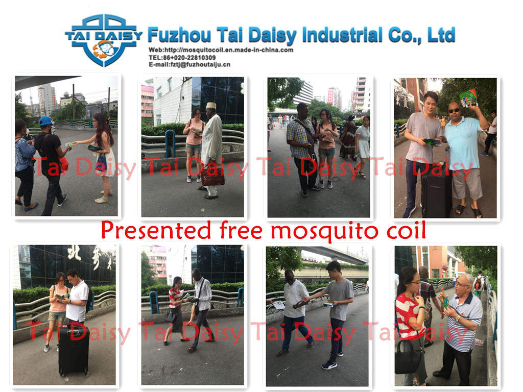 Presented free mosquito coil