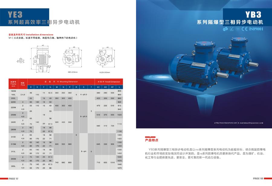 Leadrive Motor Catalog11