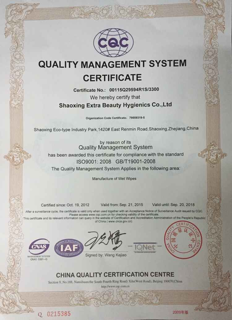 ISO 9001 certificate of wet wipes