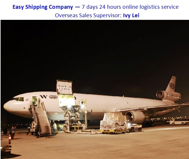 Door to Airport shipping service