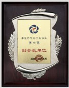 Vice president of China pneumatic chapter 6th council