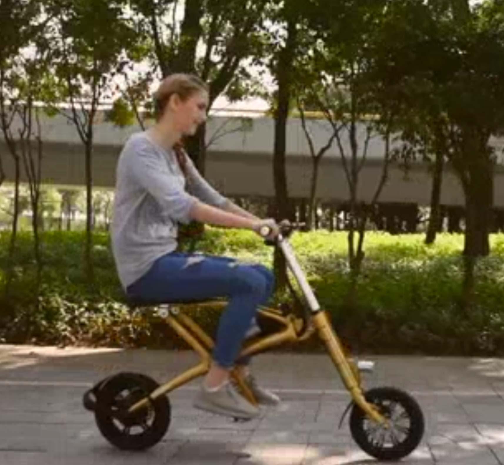 Manufacturer Direct Wholesale Portable Electric Folding Bike / Electric Bike / Electric Bicycle