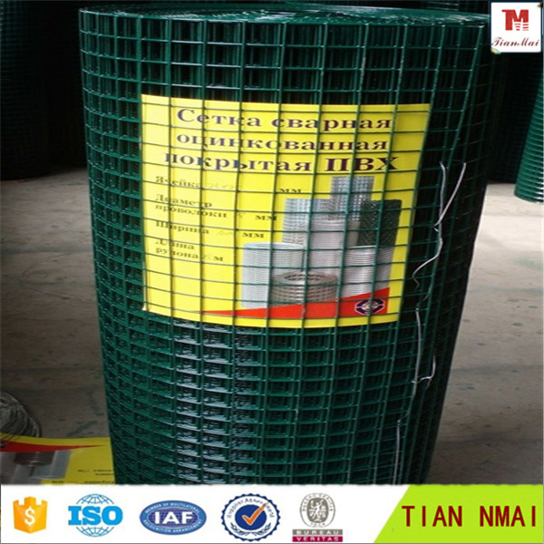 PVC Coating welded wire mesh special for export