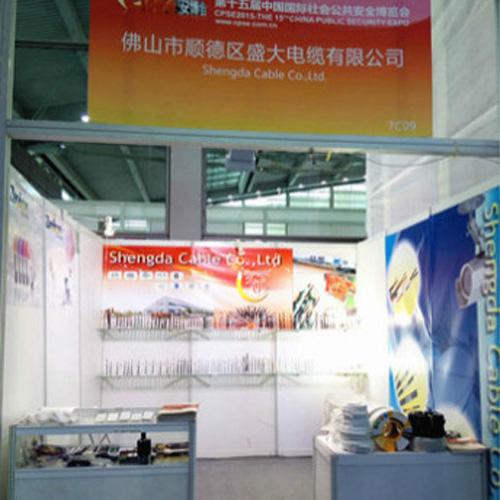 CPSE Shenzhen