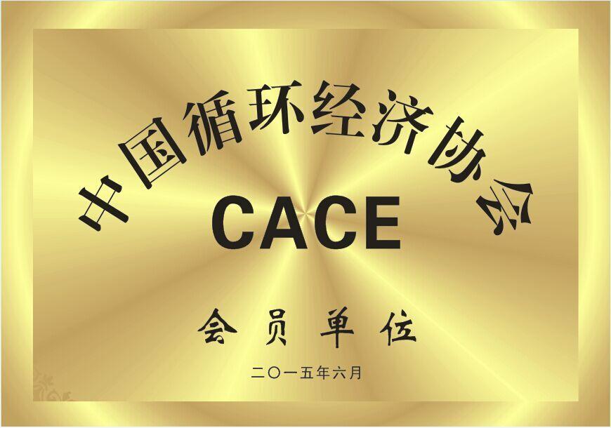 Member of China Association of Circular Economy