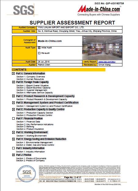 SGS Report -2