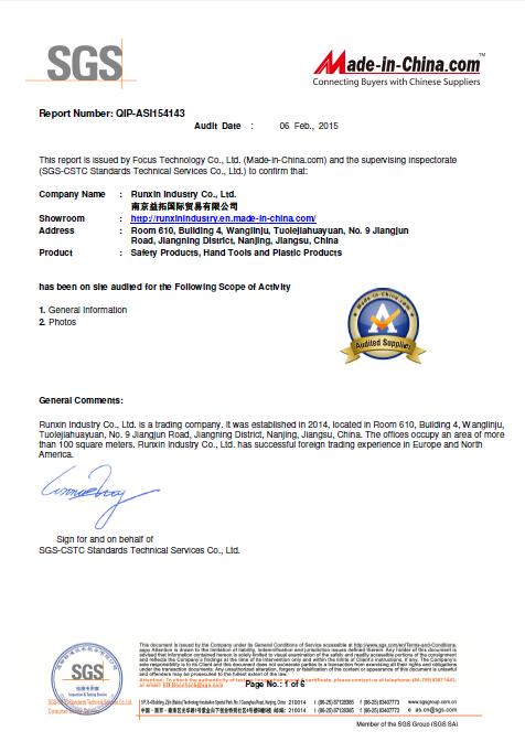 SGS Audited Report QIP-ASI154143
