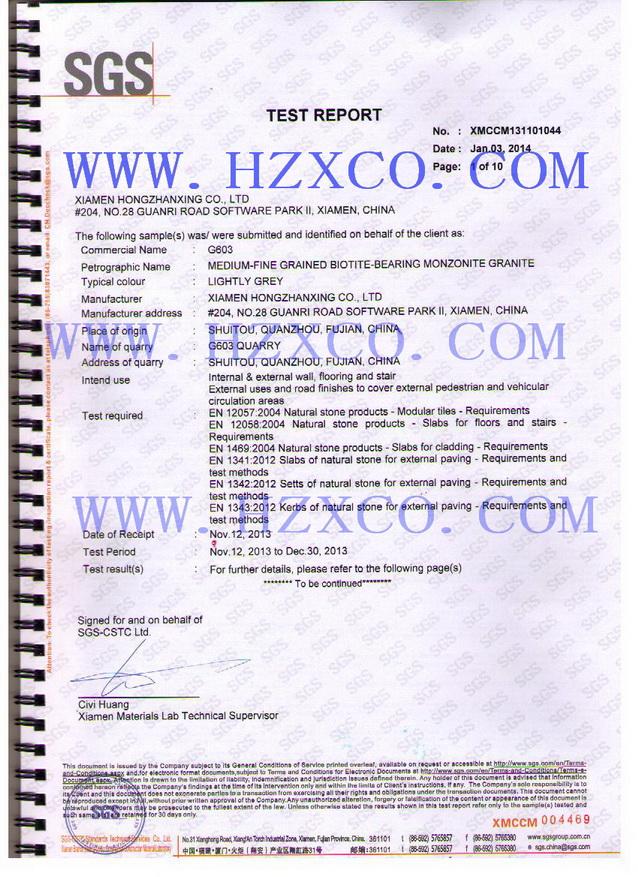 603 CE certificate