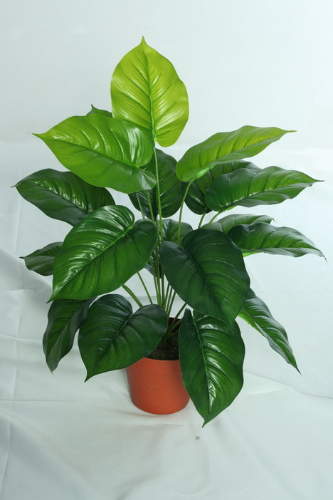 best selling artificial plants of Pothos