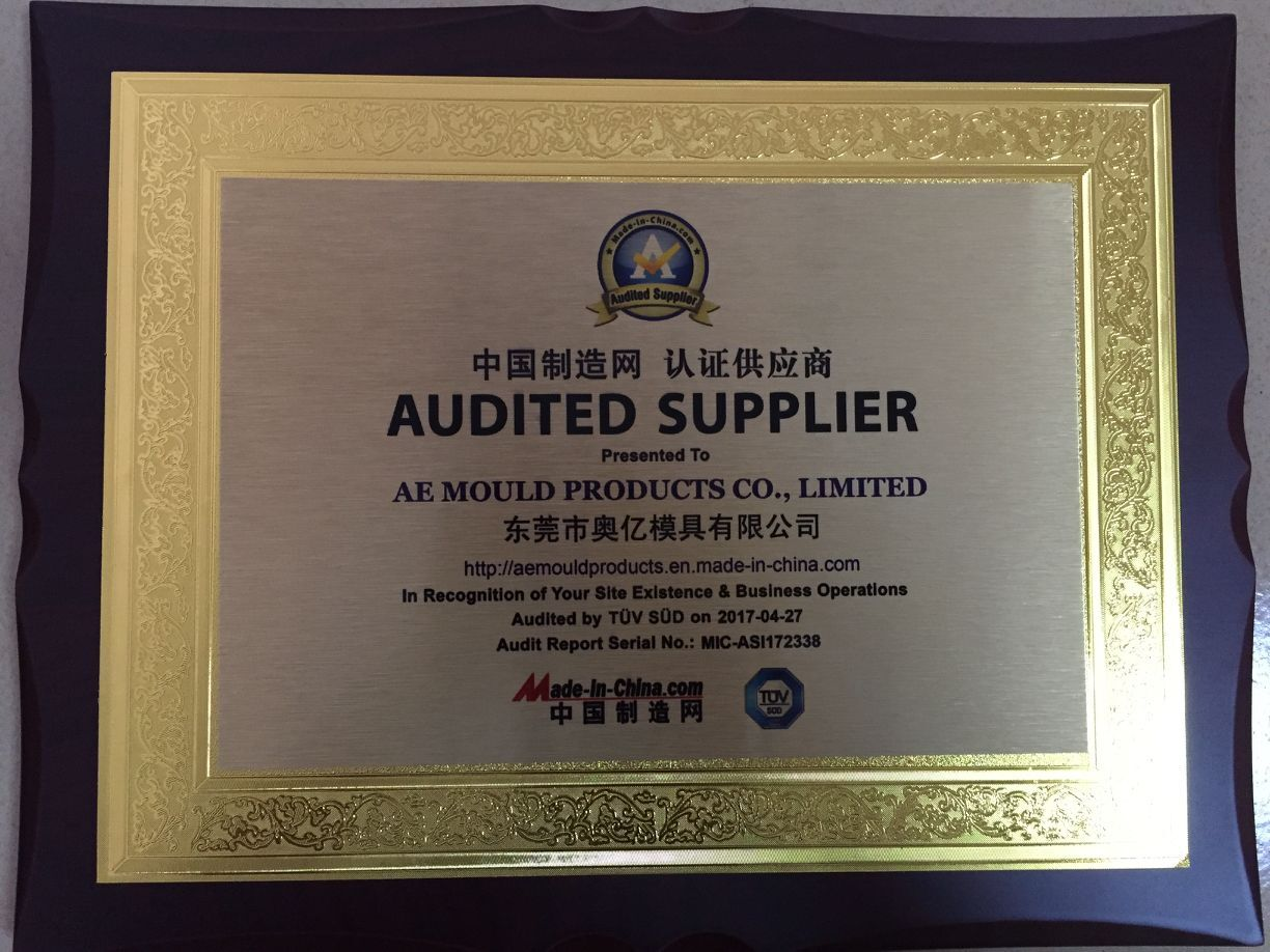 Audited Factory AE Mould
